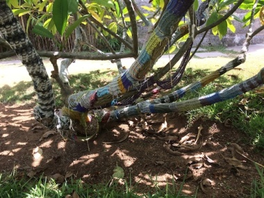 faded yarn bombed branches