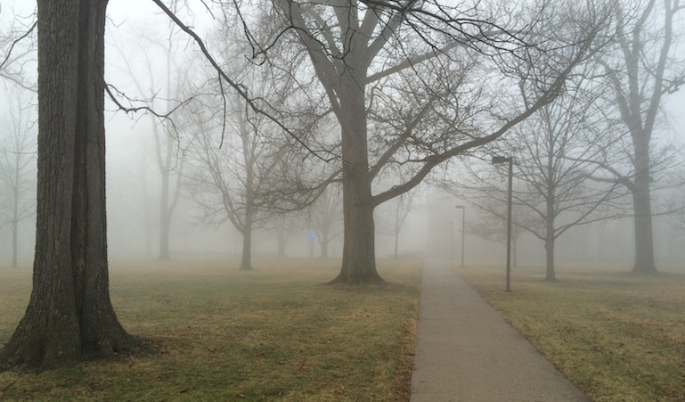 miami-ohio-fog2