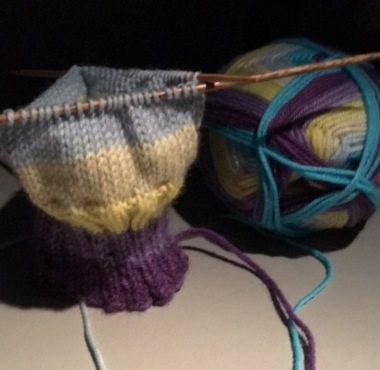 Knit-sock-ribbing
