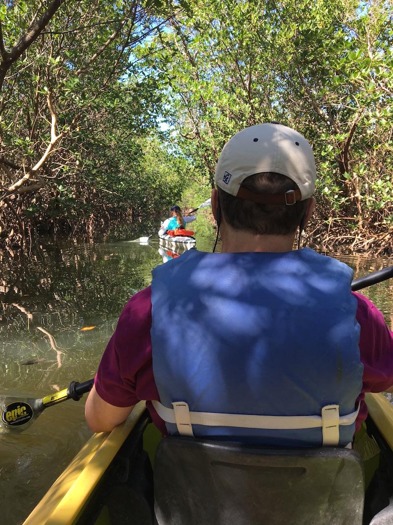 PLD-kayak