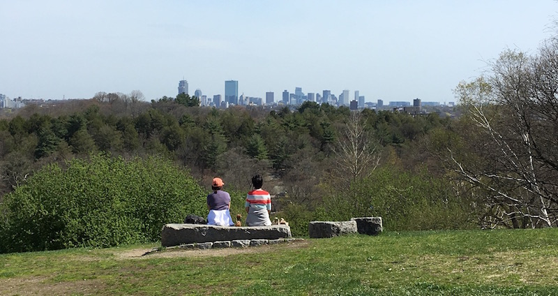 Arboretum-boston
