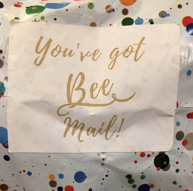 "mailing envelope with bright polka dots and label ""You've got bee mail!"""